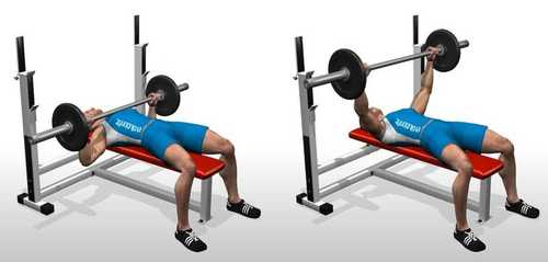 Show img flat barbell bench press 0 1 2 2 1
