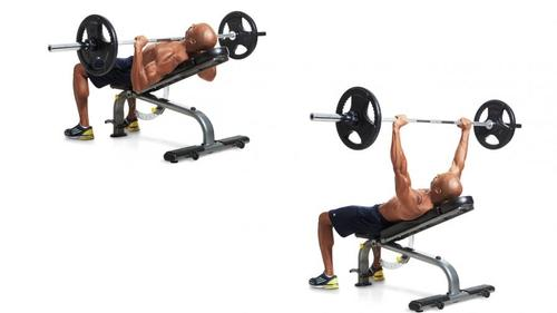 Show img incline bench press upper body chest