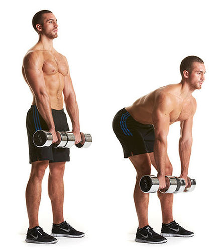 Show img dumbbell deadlifts