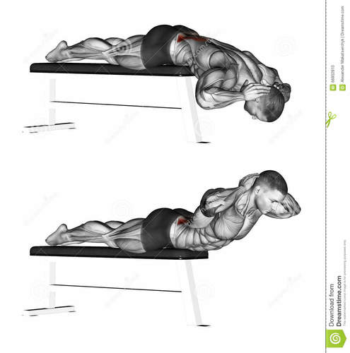 Show img exercising hyperextensions no hyperextension bench bodybuilding target muscles marked red initial final steps 66802810
