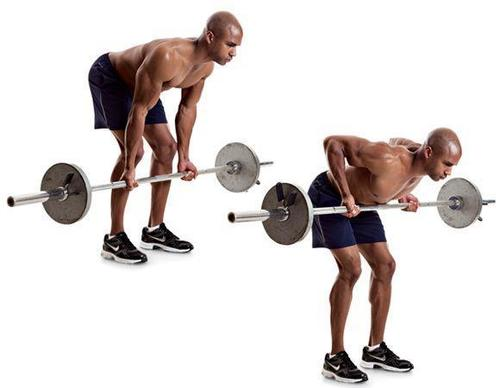 Show img bent over barbell row lats exercise back