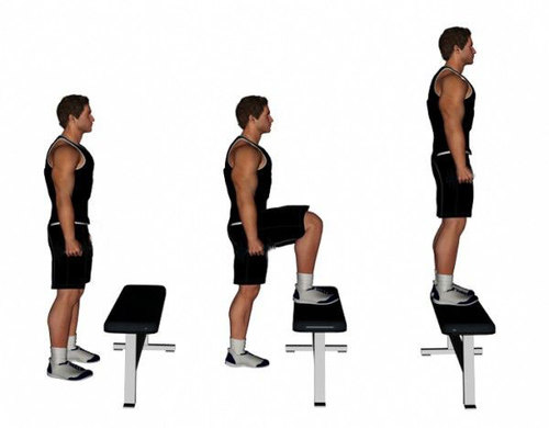 Show img step up exercise for quads and glutes