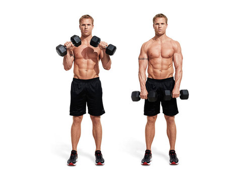 Show img zottman curl reverse dumbbell curl 1