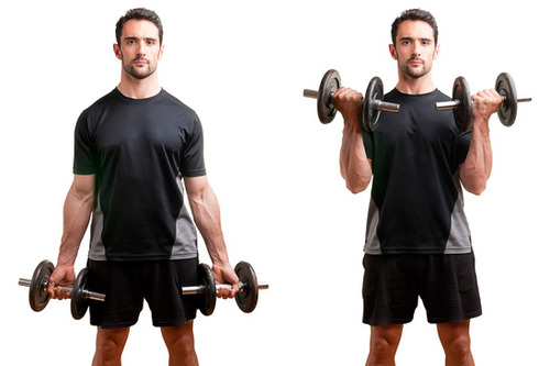 Show img standing bicep dumbbell curl photo