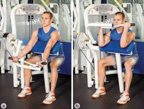 Show img machine biceps curl exercise 1