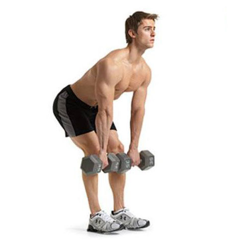 Show img 151 dumbell deadlift
